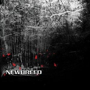 Image for 'NewBreed'