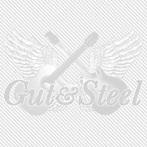 Image pour 'Gut&Steel Live Archives 2011'