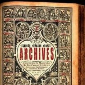 Bild för 'My Skin As Archives'