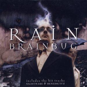 Image pour 'Rain'