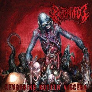 Image pour 'Devouring Rotten Viscera'
