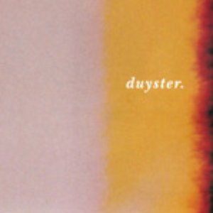 Image for 'duyster. sessies'