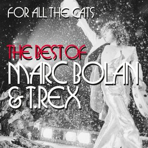 Image for 'For All The Cats - The Best Of Marc Bolan And T. Rex'