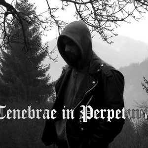 Image for 'Tenebrae in Perpetuum'
