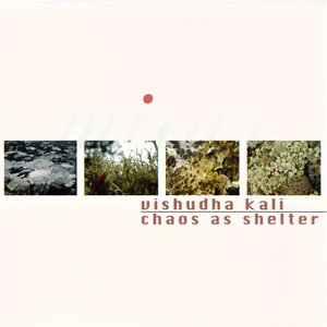 Image for 'Vishudha Kali & Chaos as Shelter'