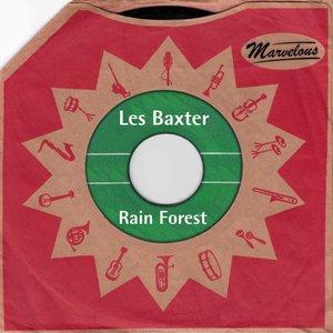 Imagen de 'Rain Forest (Marvelous)'
