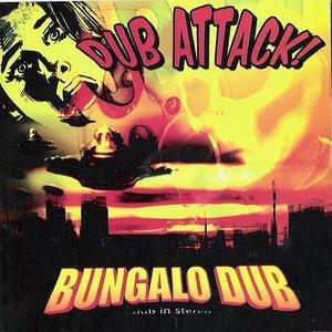 Image for 'Dub Attack'