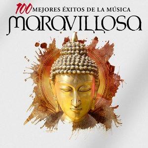 Image for 'Las 100 Mejores Éxitos de la Música Maravillosa'