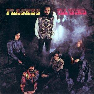Immagine per 'Flashes'