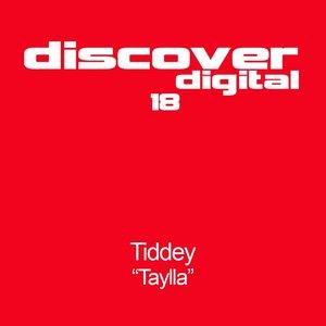 Image for 'Taylla (Tom Colontonio Remix)'