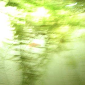 Image for 'Apeiros'