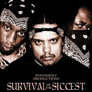 Image for 'Survival of the Siccest'