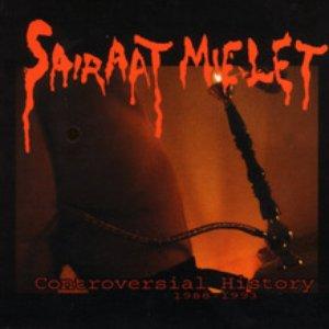 Image for 'Sairaat Mielet'