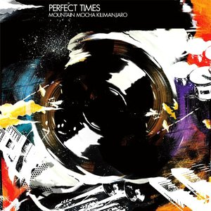 Image for 'Perfect Times'