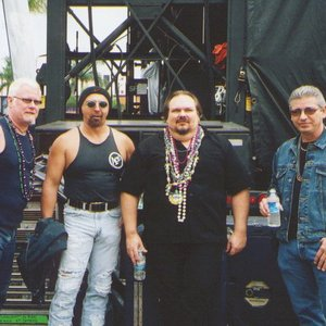 Bild för 'The Big Dogs'
