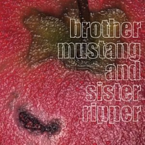 Bild für 'brother mustang and sister ripper'