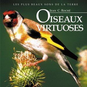 Image for 'Oiseaux virtuoses'