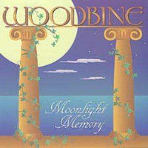 Image for 'Moonlight Memory'
