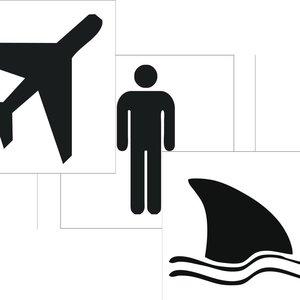 Image pour 'Flying MaN sHARK'