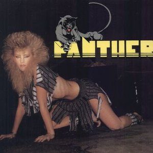 Image for 'Panther'