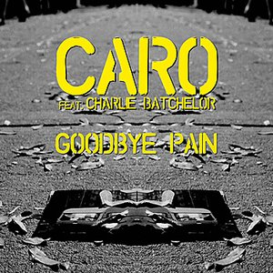 Image for 'Goodbye Pain'