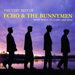 Image for 'The Very Best of Echo & The Bunnymen: More Songs To Learn And Sing'