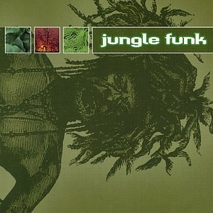 Image for 'Jungle Funk'
