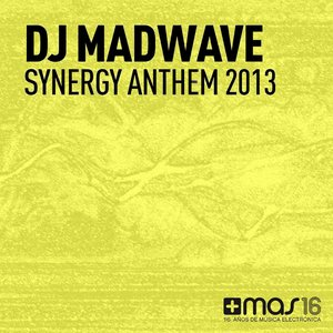 Image for 'Synergy Anthem 2013'