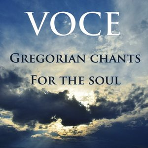 Image for 'Gregorian Chants for the Soul'