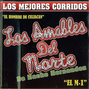 Image for 'Los Mejores Corridos'