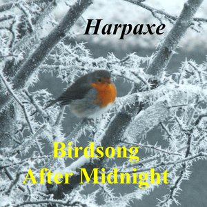 Bild für 'Birdsong After Midnight'