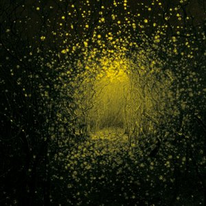 Image for 'Burst Apart (Deluxe Version)'