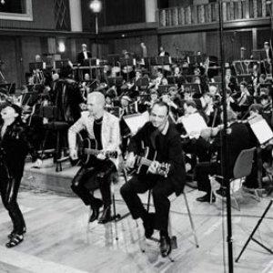 Image pour 'Scorpions & Berliner Philharmoniker'