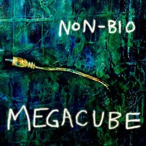 Image for 'Megacube'