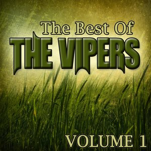 Image pour 'The Best Of The Vipers Volume 1'