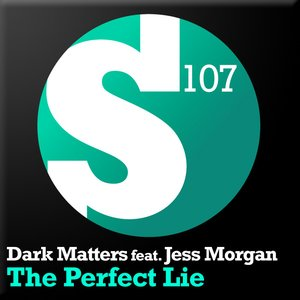 Image for 'The Perfect Lie'
