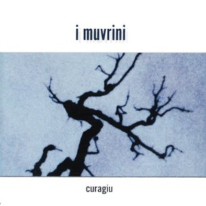 Image for 'Curagiu'