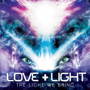 Image for 'The Light We Bring'