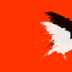 Image for 'Albino Crow'