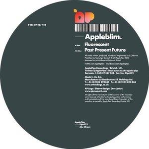 Image for 'Fluorescent / Past Present Future'