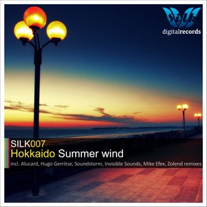 Image for 'Summer Wind (Mike EFEX Chill Island Mix)'