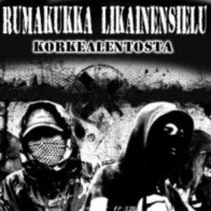 Image for 'Korkealentosta'