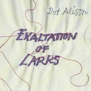 Image pour 'Exaltation Of Larks'