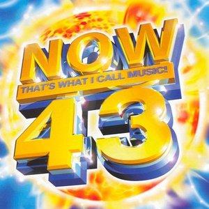 Imagem de 'Now That's What I Call Music! 43 (disc 1)'