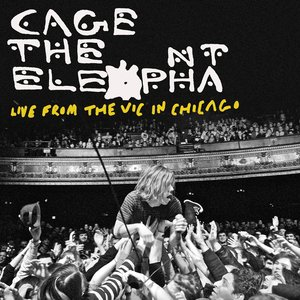 Image for 'Live From The Vic In Chicago'