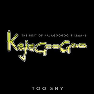 Image for 'Too Shy: The Best Of Kajagoogoo & Limahl'