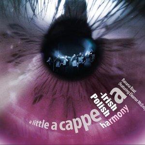 Image for 'A Little A Cappella: Polish-Irish Harmony'