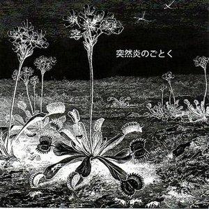 Image for 'The Lamp - Tomorrow's Godard'