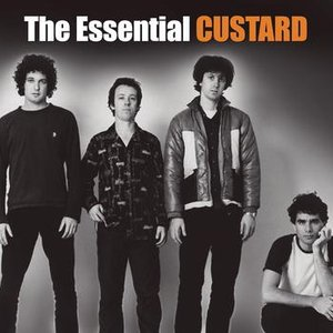 Image for 'The Essential'