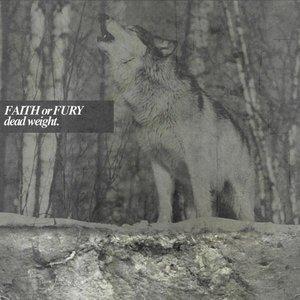 Image for 'Faith or Fury'